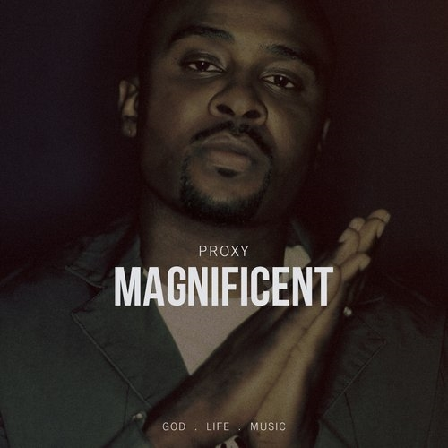 proxy-magnificent
